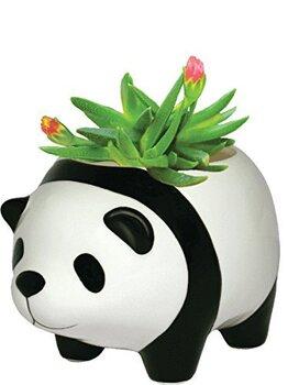 panda-plant-pot